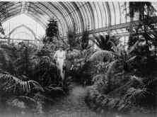 1915-shaw-greenhouse-interior